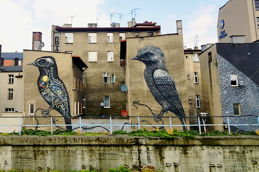 mural Katowice, ul. Mariacka Tylna 11, ROA